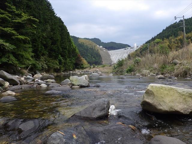 秡川 伊良原ダム下流域-2