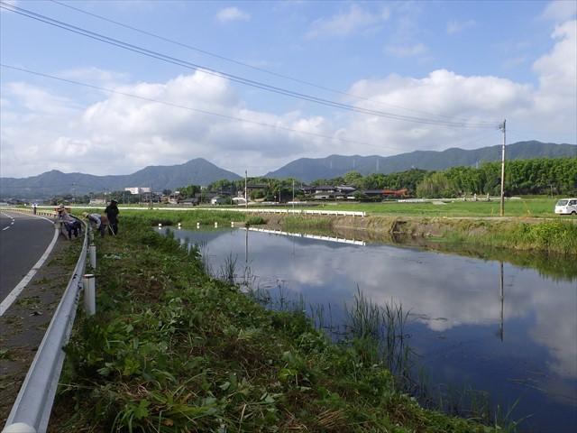 河川の草刈り