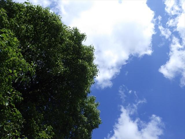 玄関先から眺めた空