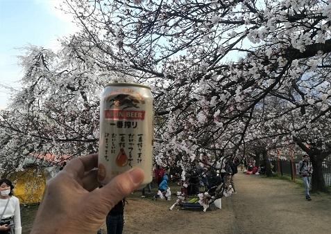 12 ビールで乾杯