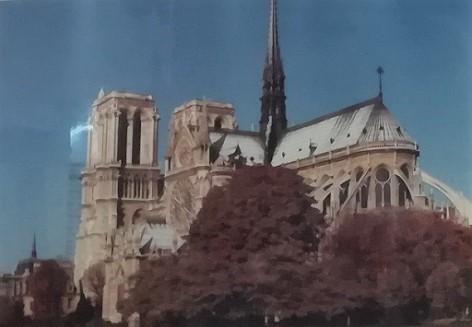 2 39年前のノートルダム大聖堂 (3)
