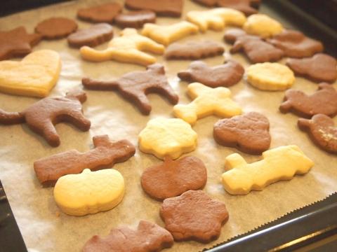 190223-25cookies.jpg
