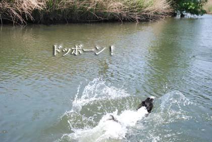 25-f0114893_753382.jpg