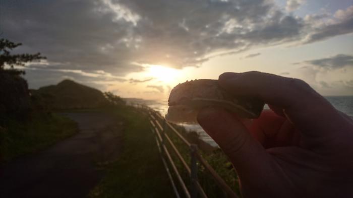 鳥取バージョン!焼き鯖寿し6