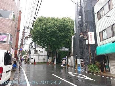 goshuinzoshigaya01.jpg