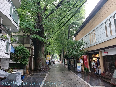 goshuinzoshigaya04.jpg