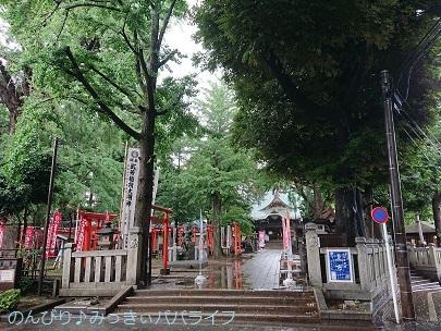 goshuinzoshigaya06.jpg