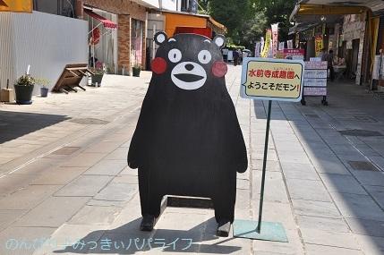 kumamoto2019021.jpg
