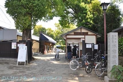 kumamoto2019022.jpg