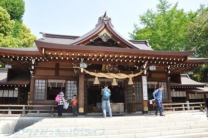 kumamoto2019028.jpg