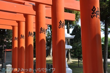 kumamoto2019032.jpg