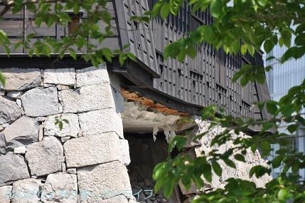 kumamoto2019078.jpg