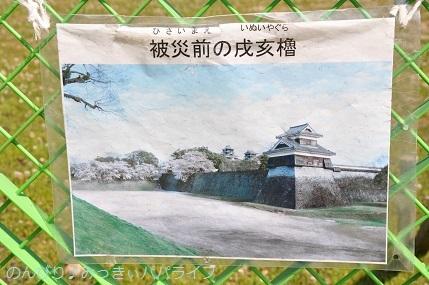 kumamoto2019093.jpg