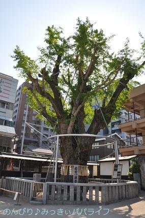 kumamoto2019152.jpg