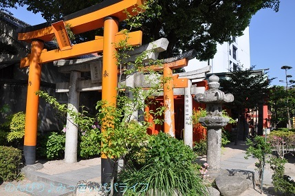kumamoto2019155.jpg