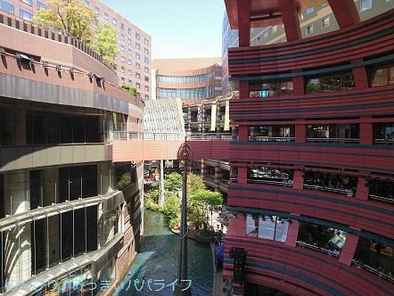 kumamoto2019161.jpg