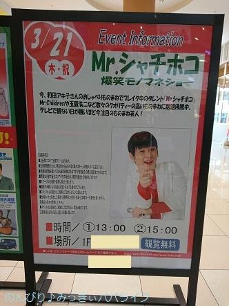 mrshachihoko01.jpg