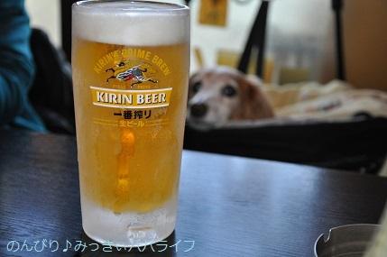 yakitori20190319.jpg
