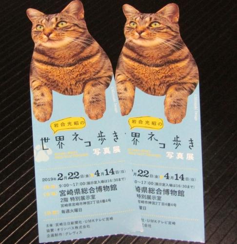 ネコ歩き展7