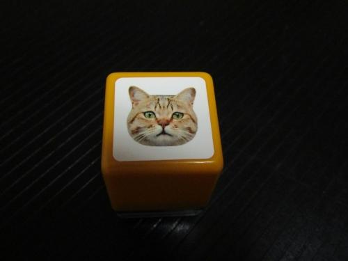 ネコ歩き展5