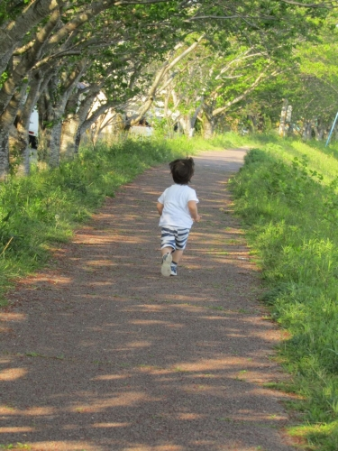 2019散歩4
