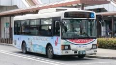 SKG-KR290J1 (渋)