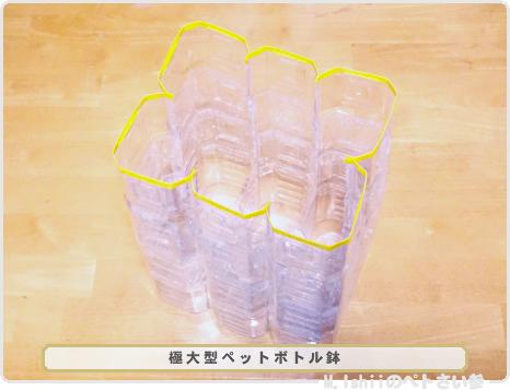ペトさい(ペットボトル鉢)09