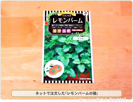 購入した野菜の種2019春_03