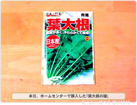 購入した野菜の種2019春_06