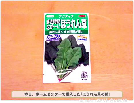 購入した野菜の種2019春_08