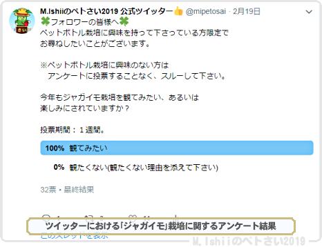 ペトさい(ジャガイモIII)02