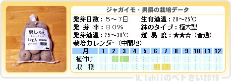 ペトさい(ジャガイモIII)15