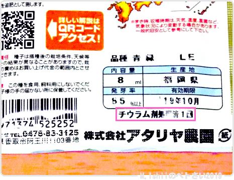 ペトさい(葉大根・改)02
