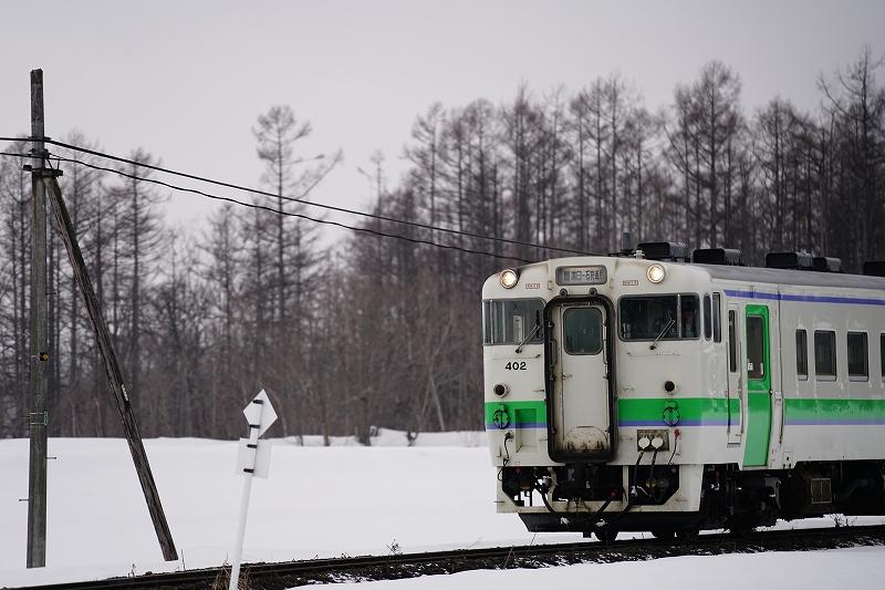 DSC08117.jpg