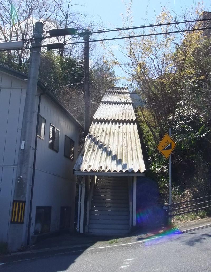 公民館階段屋根雑木伐採4