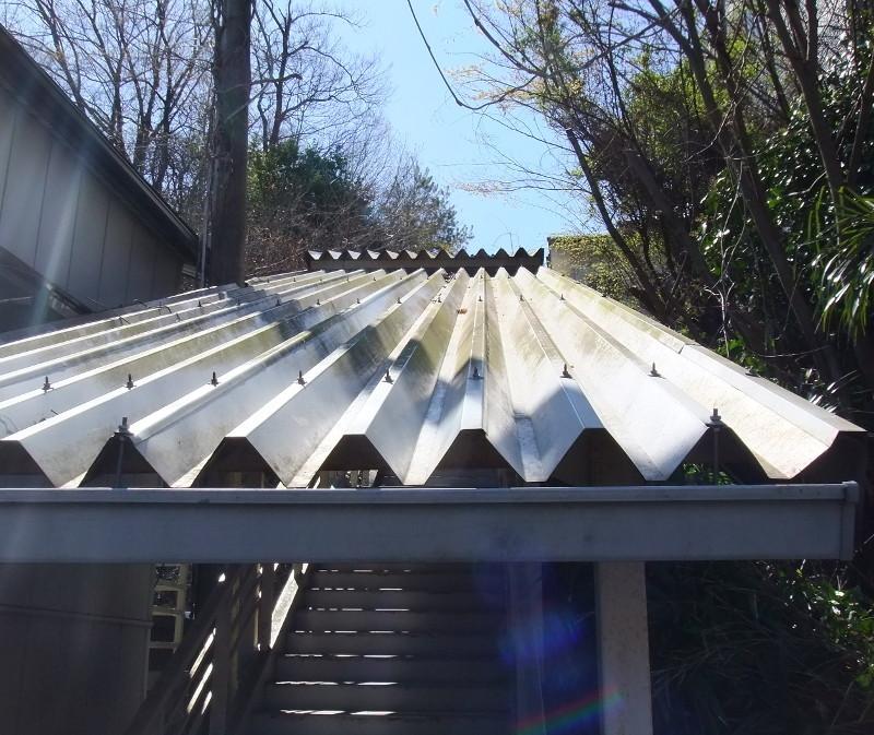 公民館階段屋根上の雑木伐採1