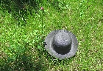 夏の花 帽子