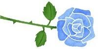 rose-blue (2)