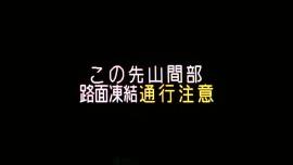 20190406御殿場桜003