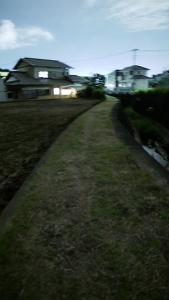 20190531沢地川29GX7mk2