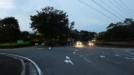20190606愛鷹広域公園026