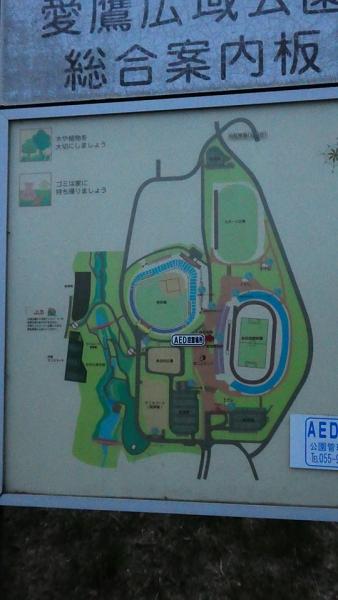 20190606愛鷹広域公園028