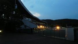 20190606愛鷹広域公園031