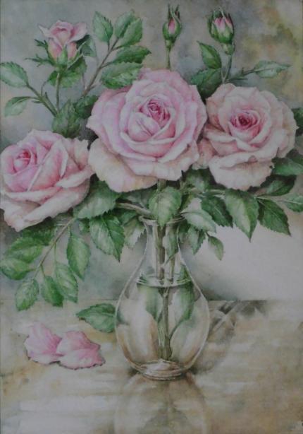 バラ 1904