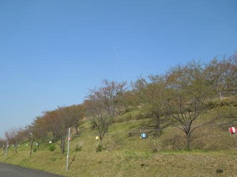 DSCN0213_00001.jpg