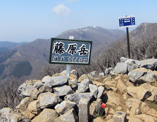 IMG_8161_fujiwaratake.jpg