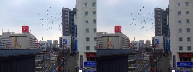 JR福山駅からの景観 2019.3.23(交差法)