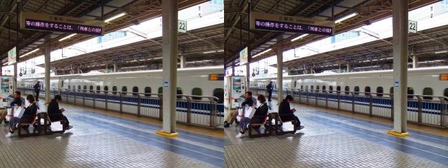 JR新大阪駅 2019.3.23(平行法)