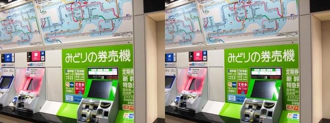 JR野江駅 2019.3.17②(交差法)