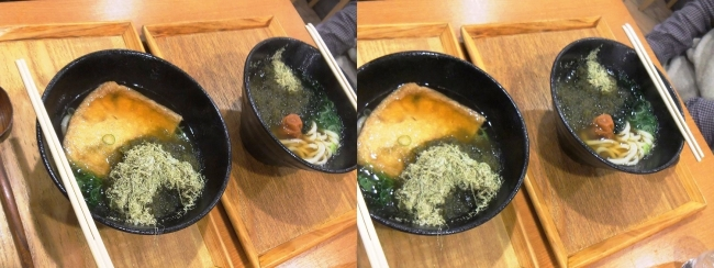 JR新大阪駅 本町製麺所 天(TEN)新なにわ大食堂店 2019.3.16(平行法)